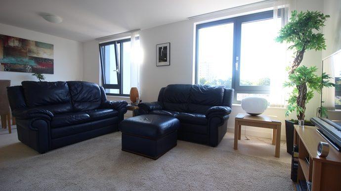 Living Area (s)