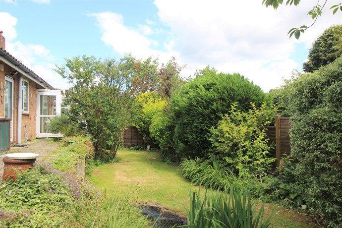 Rear Garden (s)
