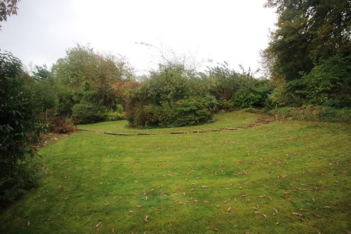 Garden 6 (s)